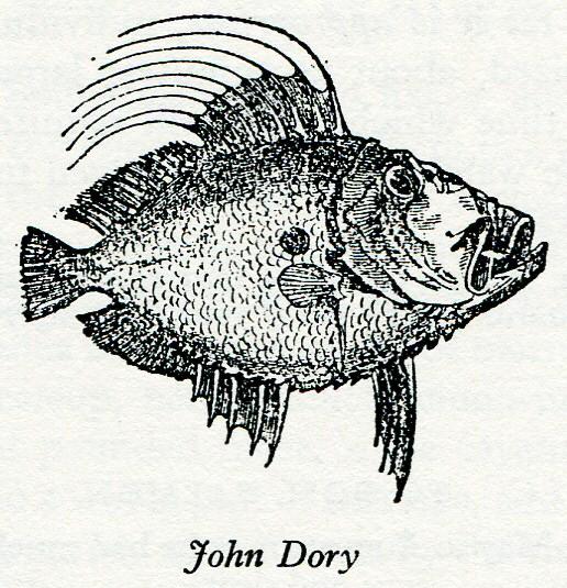 Answer - Kosher Fish